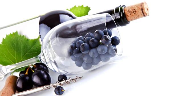 不懂葡萄酒